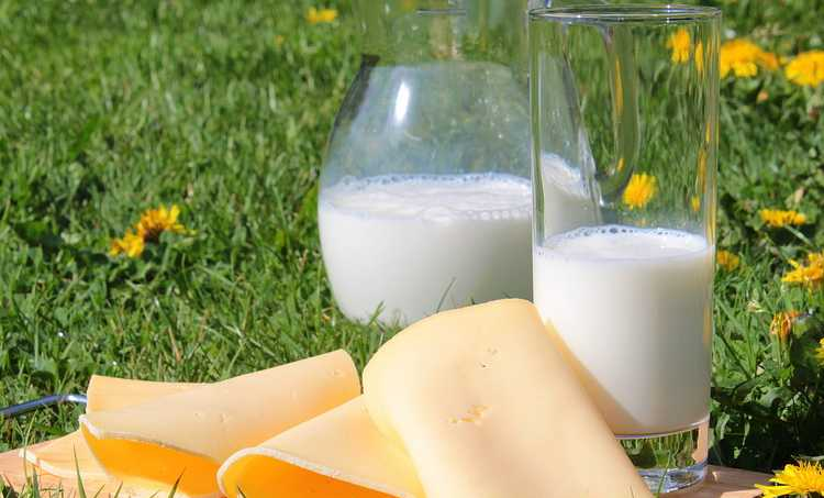How To Increase The Level Of Calcium In Your Body?